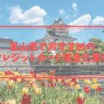 クレジットカード現金化 富山県